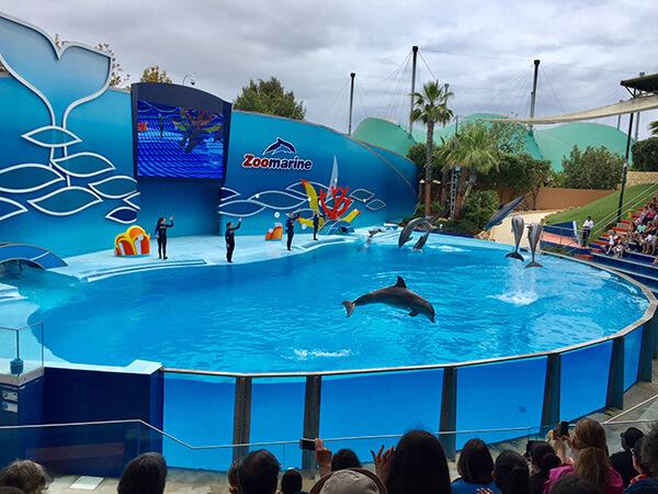 zoo marine portugal tijdens onze camperreis