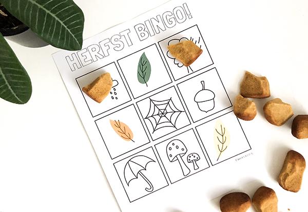 Wie heeft er al herfst bingo?!  (gratis printable)