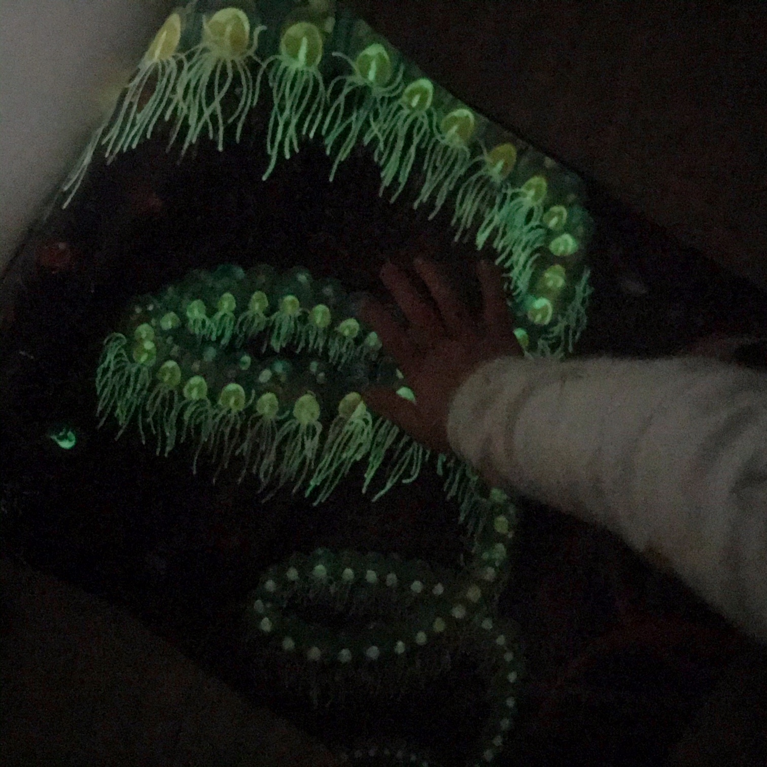 dieren in de nacht kinderboeken met glow in the dark
