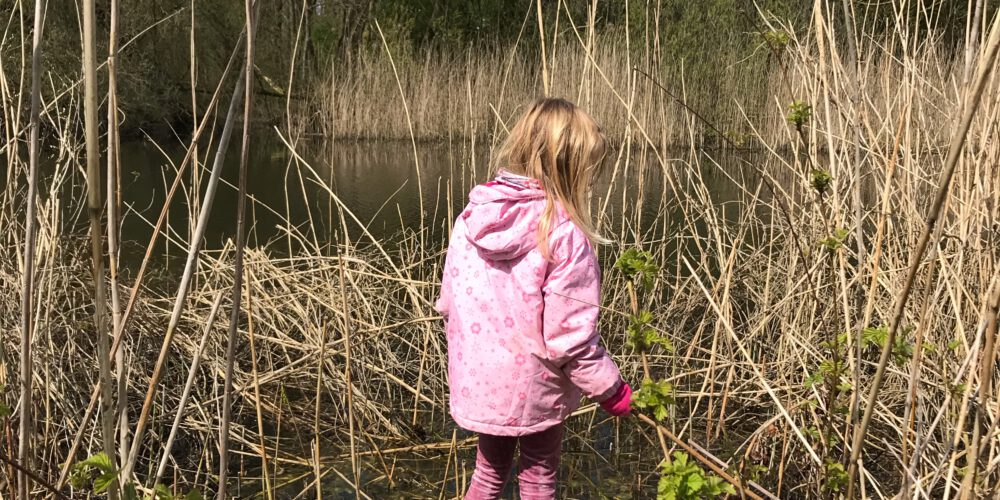 natuur ontdekken met kinderen
